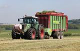 Harvesting 50 acres